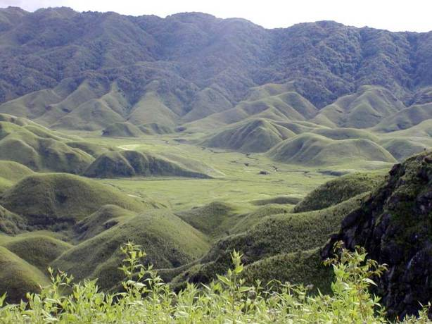 Nagaland Tourist Places 2 - dzukou valley nagaland